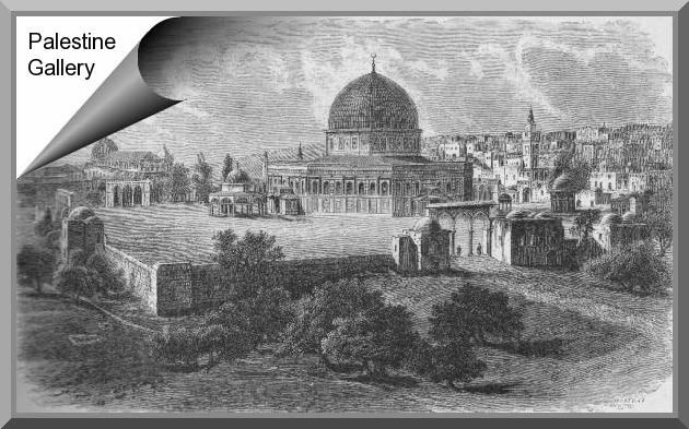 Palestine Gallery: Pictures from 1879